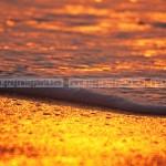 Golden Foam
